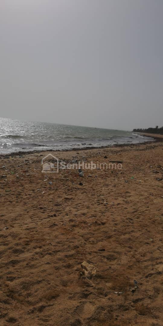 Terrain pieds dans l'eau à vendre à nianing - SenhubImmo.com